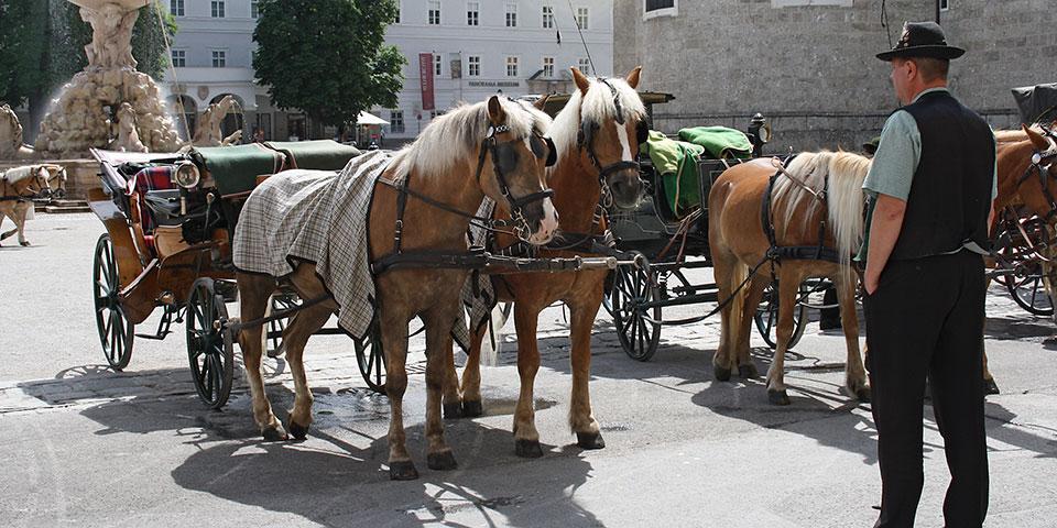 Hestevogne i Salzburg.