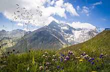 Smukt alpelandskab i Østrig