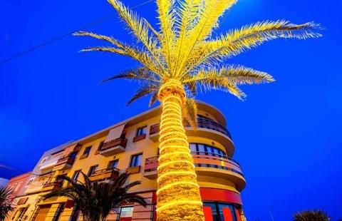 Julepyntet palme på Tenerife.