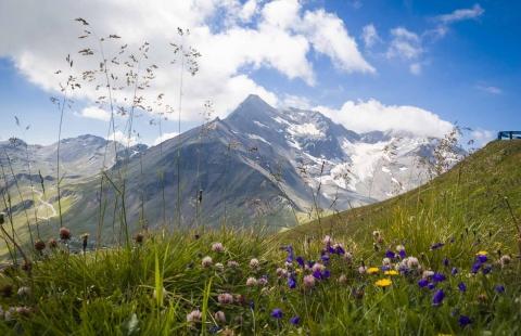 Landskab i Østrig