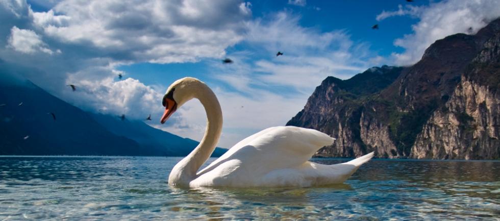 Rejseforsikring og afbestillingsforsikring - Vitus Rejser