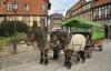 Hestevogn i Tyskland
