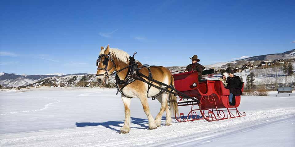 Oplev det smukke landskab på en kane- eller hestevognstur.