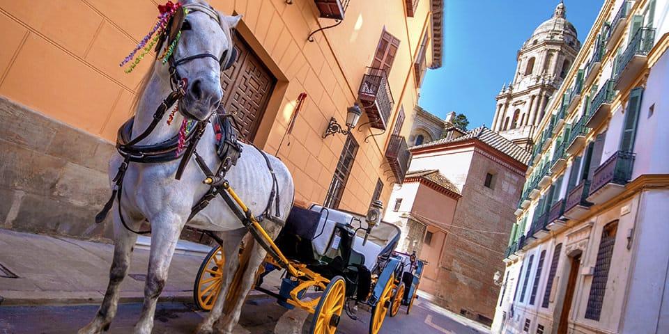 Hestevogn i Málaga.