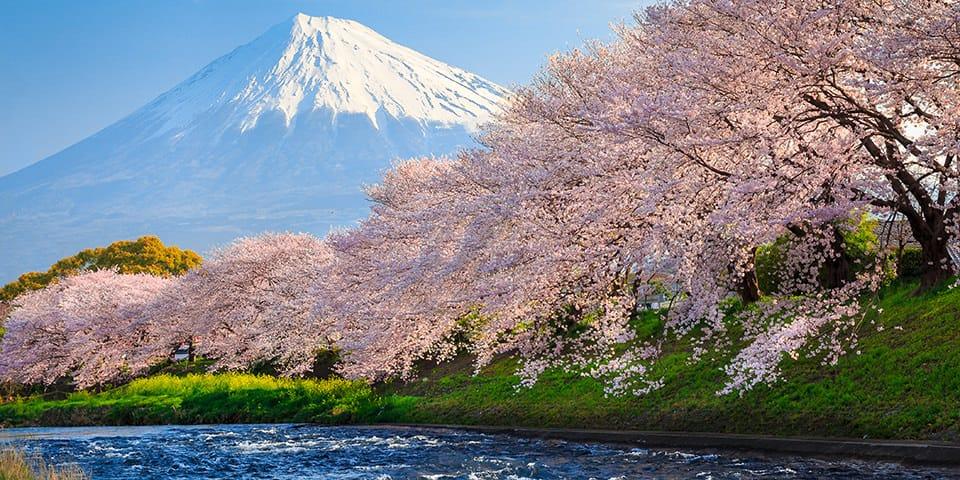 Det majestætiske Mount Fuji, der er symbolet på Japan.
