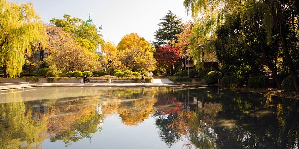 Ueno Park i gyldne efterårsfarver.