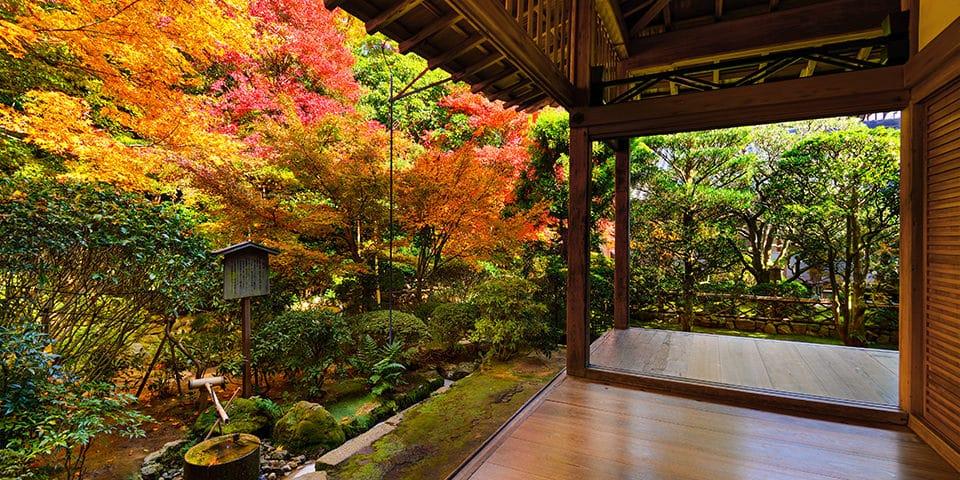Den mystiske zenhave Ryoan-ji.