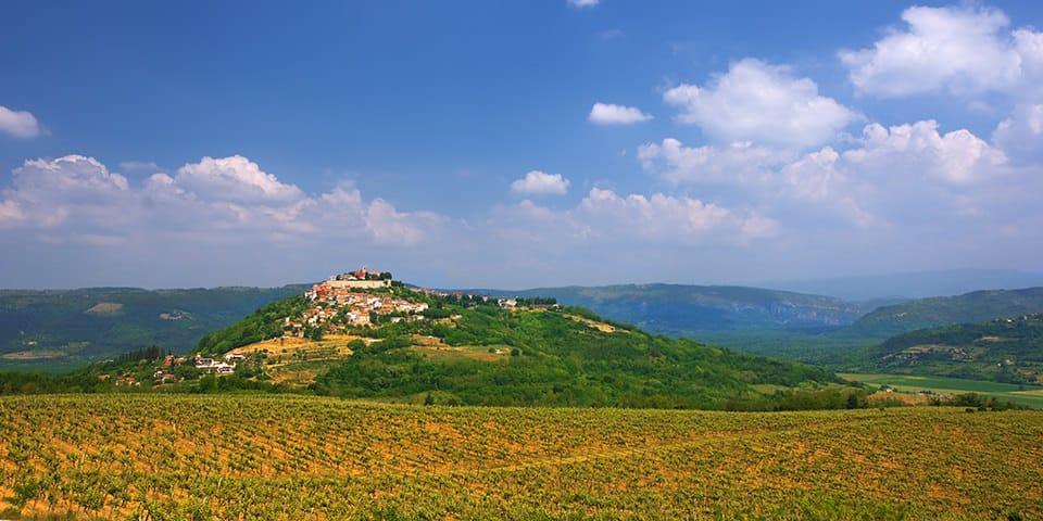 Vrsar på Istriens vinrute.