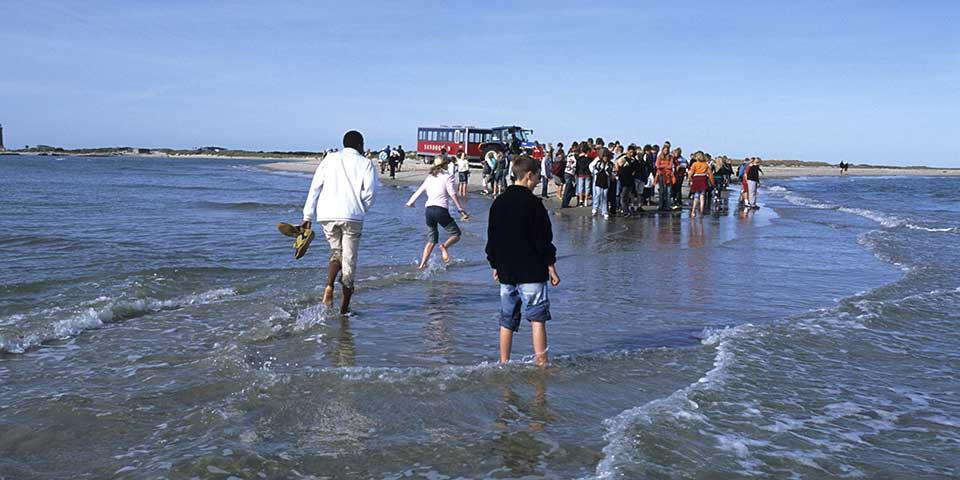 Turister på Grenen ved Skagen.