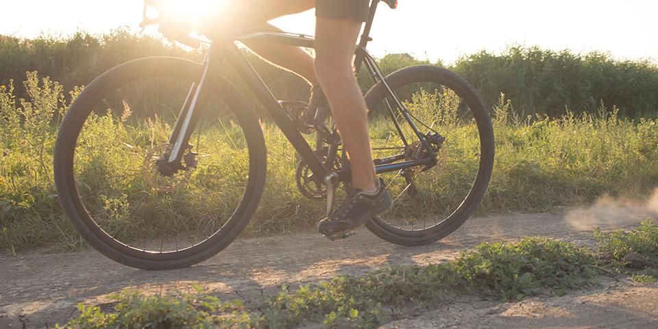 På cykeltur i Skagens enestående naturområde.