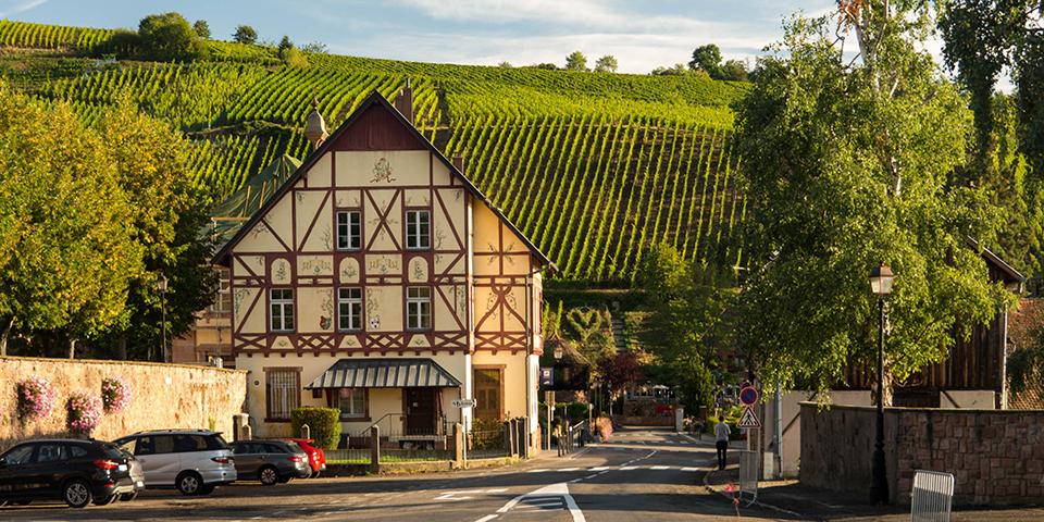 Bindingsværk og vinmarker i Riquewihr på Route des Vins.