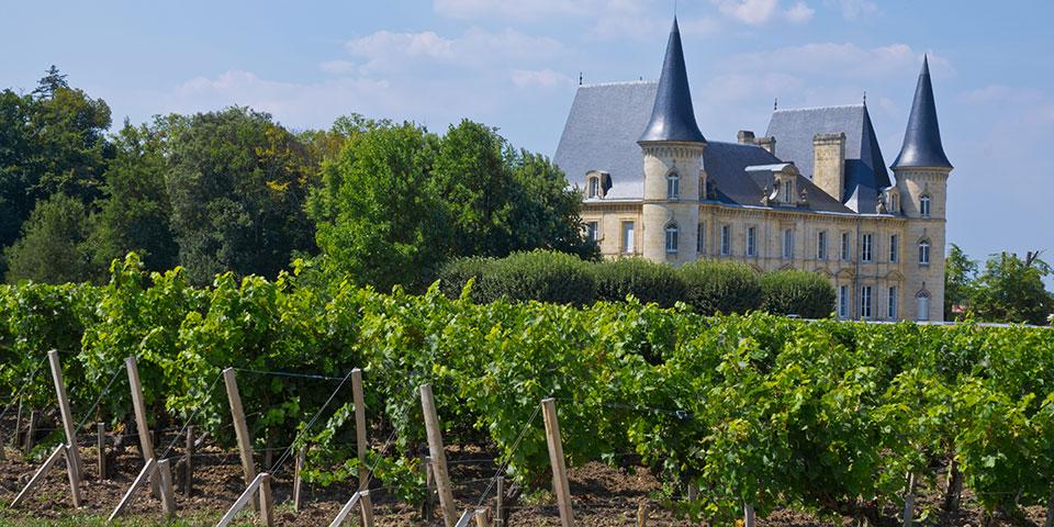 Landskabet ved vinbyen Paulliac.