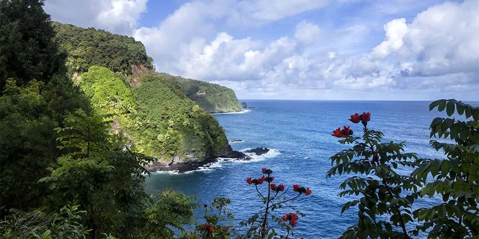 Mauis fantastiske skønhed gør den til en af verdens foretrukne rejsemål.