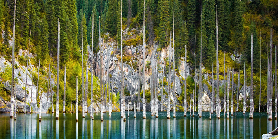 Den berømte Kaindy-sø med de mange pæle.