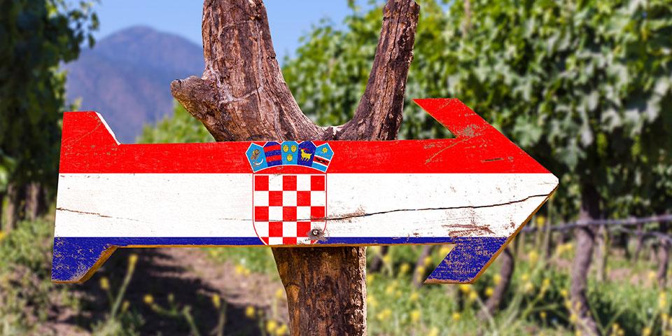 Denne vej til vinmarkerne...