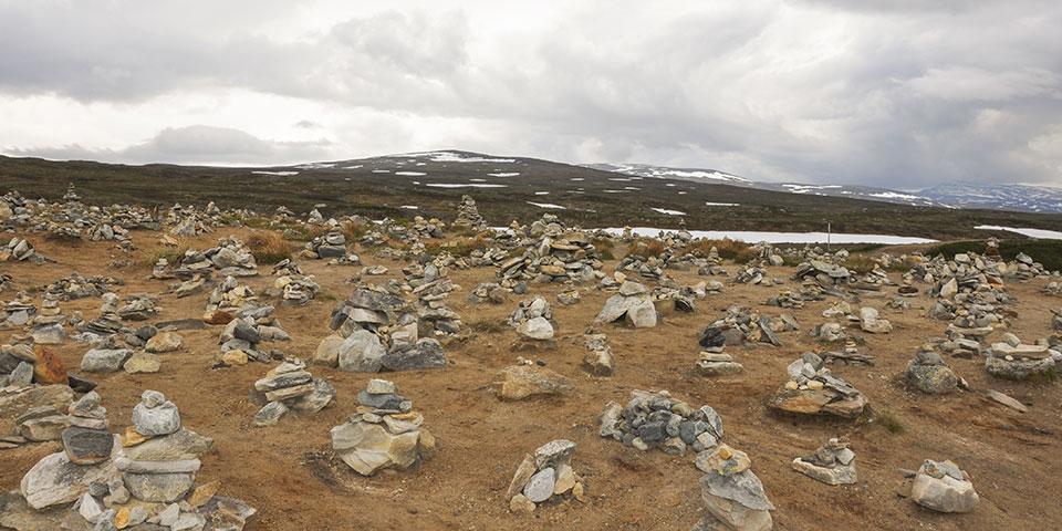 Det barske saltfjell, hvor Polarcirklen går igennem.