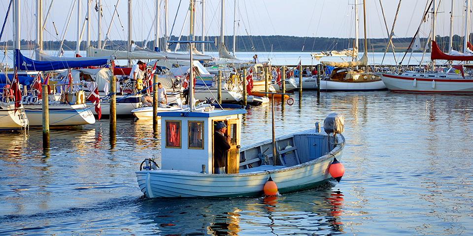 Der er masser at se på i Rørvigs idylliske havn.
