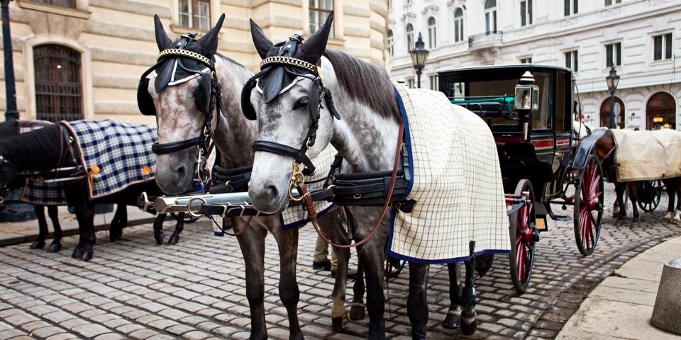 Hestevogn venter foran Den Spanske Rideskole.