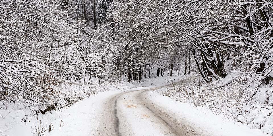 Slædetur i gennem vinterlandskabet i Nationalparken Ojcow.