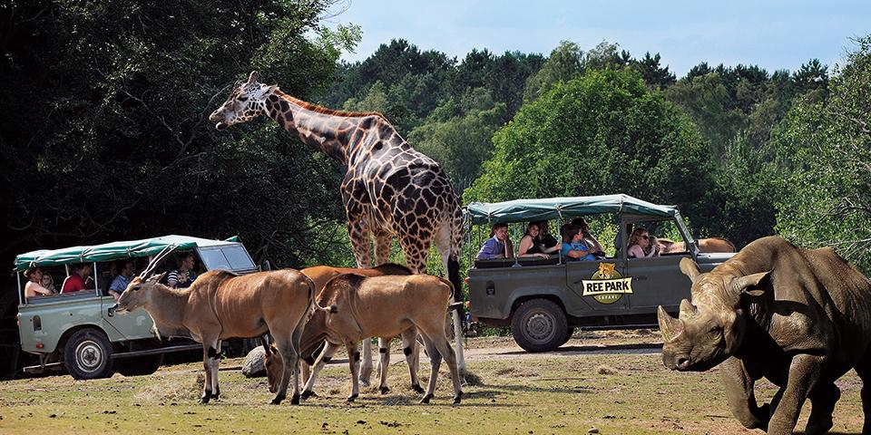 På safari i Ree Park.