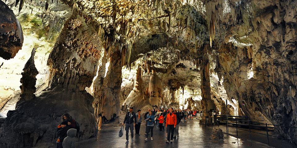 De imponerende stalagmitter og stalaktitter i Postojna-grotterne.
