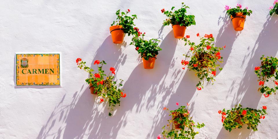 Gadeskilt og blomster i Marbella.
