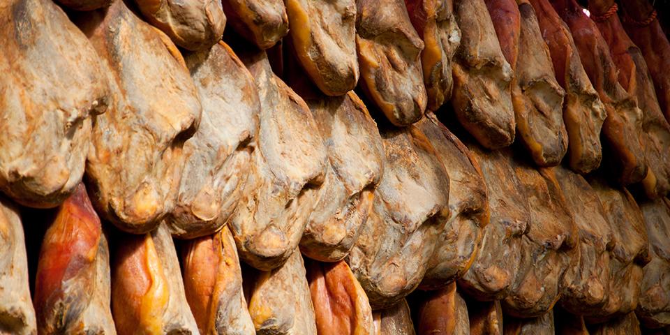 Skinker til tørre i Las Alpujarras.