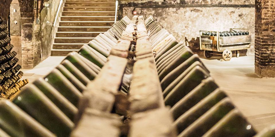 Gamle flasker med Cava i Sant Sadurni d'Anoia.