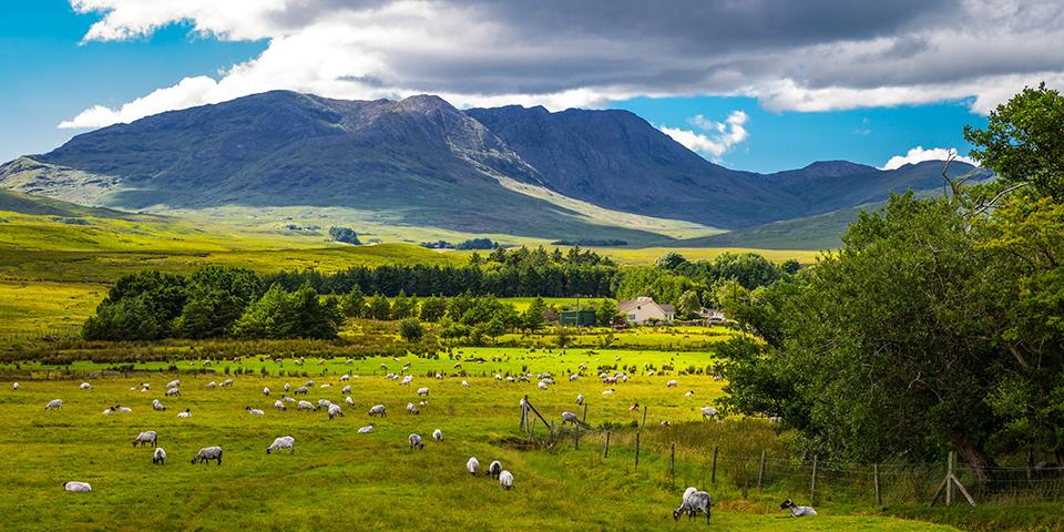 Smuk natur på halvøen Connemara.