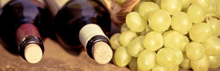 Vinrejser-gastronomirejser