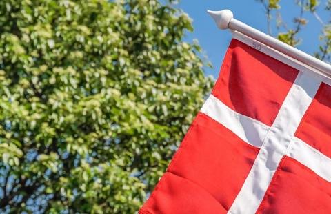 Dansk flag - Fødselsdagskrydstogt på Rhinen