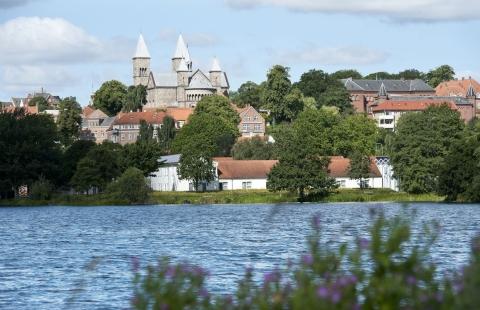 Søndersø med Viborg Domkirke i baggrunden.