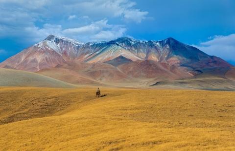 Rytter på Kasakhstans farverige slette.