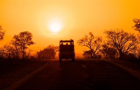 Solnedgang på fotosafari i Balule Nature Reserve.