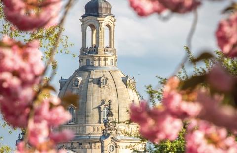 Toppen af Frauenkirche i Dresden.
