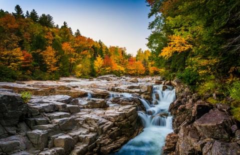 Flotte efterårsfarver i White Mountains.