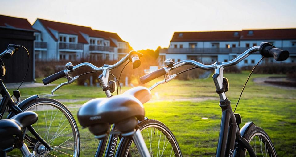 Det er muligt at leje cykler på hotellet.