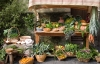 Italiensk groenthandler - Trevi