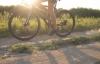 På cykeltur i Danmark.
