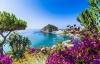 Udsigt og blomster på Ischia.