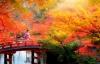 Smukke Japan i efterårsklæder.