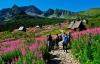 Smukke omgivelser i Tatrabjergene.