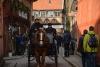 Hestevogn i Den Gamle by i Århus.