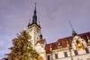 Juletræet ved rådhuset i Olomouc.