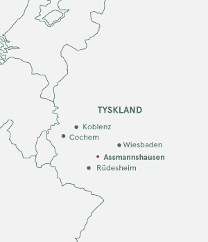 Rutekort - Rhinen og Assmannshausen - 2019