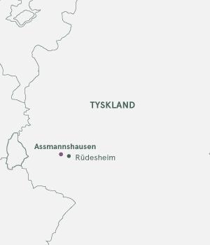 Kort - Rhinen og Assmannshausen - Sommer 2020 og 2021