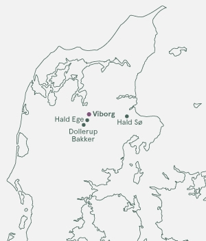 Kort - Viborg - Jul - 2019