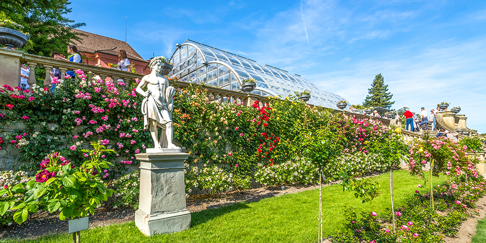 Mainau-parken er fyldt med farverige blomster, buske og træer fra hele verden.