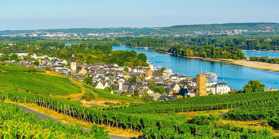Den maleriske og verdenskendte vinby Rüdesheim.