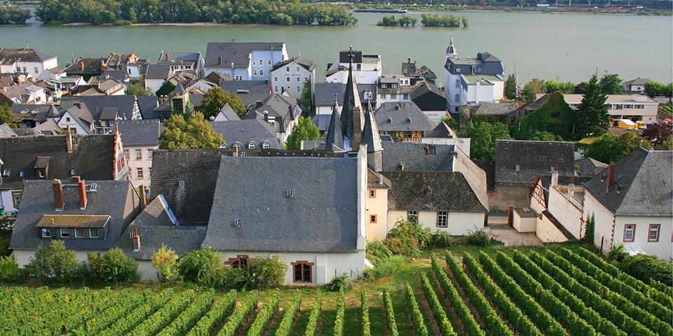 Vinmarker og Rhinen indrammer hyggelige Rüdesheim.
